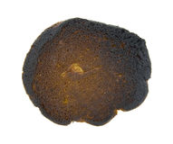Back of Burned Cookie Royalty Free Stock Photo