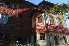 Back of the castle with beautiful red ivy in the village of Strassoldo Friuli (Italy) Royalty Free Stock Image