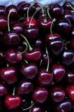 Back cherry. Fresh black cherries at the market Stock Photos