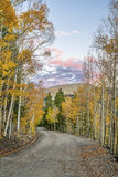Back country road in Colorado Royalty Free Stock Photos