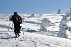 Back country skier (ski touring) Stock Photography