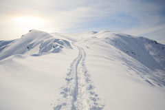Back country skiing Royalty Free Stock Images