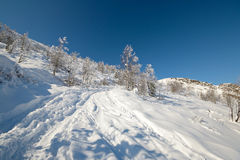Back country skiing Stock Images