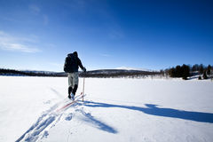 Back Country Skiing. A cross country skiier skiing off trail back country Royalty Free Stock Photography