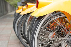Back detail of bicycles Royalty Free Stock Photo