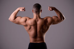 Back Double Biceps Pose Stock Photo