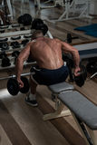 Back Exercises With Dumbbell Royalty Free Stock Images