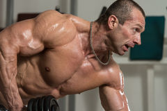 Back Exercises With Dumbbell Stock Photography
