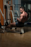 Back Exercises On A Seated Row Machine Stock Images