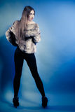 Back fashionable girl with long hair. Young woman in fur coat. Stock Photography