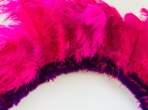 Back feathers and embroidery of carnival. Violet and pink feathers of the backs for the carnival royalty free stock photos