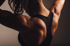 Back of female fitness model royalty free stock photography