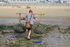 Back of the fishermen lug oysters Royalty Free Stock Photos
