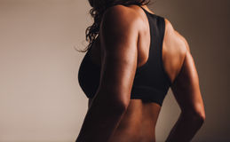 Back of a fit woman athlete in sports bra. Back of a fit and muscular woman athlete in sports bra. Rear view of fitness female with muscular body. Highlighted on stock photography