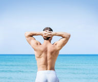 Back of a fit young man on the beach. Young, fit and handsome man with athletic and muscled body standing on a summer beach Stock Photography