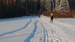 Back of four nonpro skiers riding on track in winter day stock footage