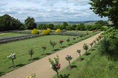 Back garden Royalty Free Stock Photo