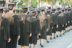 Back of graduates during commencement. Back of graduates during commencement Stock Photography