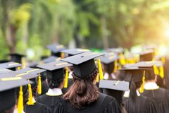 Back of graduates during commencement at university. Close up at. Graduate cap stock image