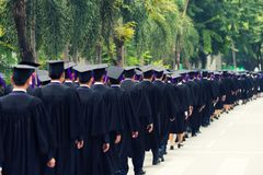 Back of graduates during commencement at university. Close up at. Graduate cap Stock Photography