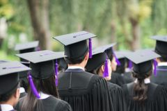 Back of graduates during commencement at university. Graduate wa. Lking royalty free stock images