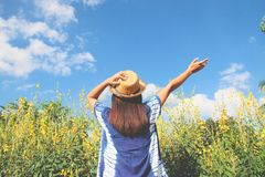 Back of happy woman in casual style with yellow flowers field. And blue sky Stock Photo