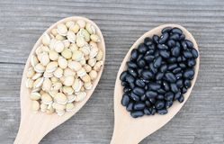 Back and lablab beans Stock Photography