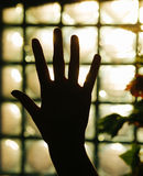 Back light open hand Royalty Free Stock Photography