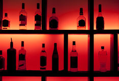 Free Back Lit Bottles In A Cocktail Bar Stock Images - 8252464