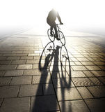 Back lit cyclist in evening light Stock Images