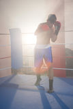 Back lit male boxer punching in boxing ring Royalty Free Stock Photo