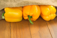 Back lit Tree yellow bell pepper Royalty Free Stock Photography