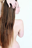 Back and long hair Royalty Free Stock Images