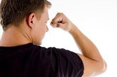 back male muscles muscular pose showing Στοκ Εικόνες