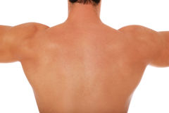 Back of a male person Stock Image