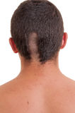 Back of man head while his hair is cut Stock Photography
