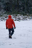Back of man in red coat walking in snow. Back of man in red coat walking through snow royalty free stock images