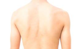 Back of man on white background Stock Image