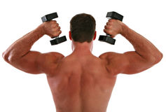 Back of a Man Working Out Stock Image