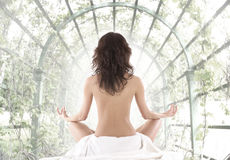 Back of a meditating young brunette Stock Photography