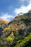 Back mountains of Madeira island Stock Photography