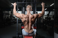 Back muscle man's back. Male bodybuilder flexing his back Royalty Free Stock Photography