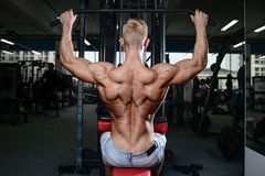 Back muscle man's back. Male bodybuilder flexing his back Stock Image