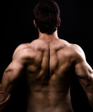 Back muscles of big healthy naked man. Over black Stock Images