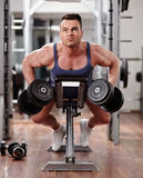 Back muscles workout Stock Images