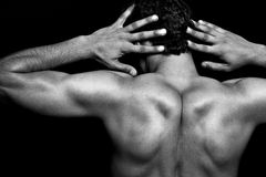 Back of muscular athletic young man. Over black Stock Image