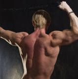 Back of muscular bodybuilder Stock Image
