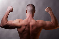Back of muscular man. Close-up of male torso. Body builder, rear view Royalty Free Stock Photos