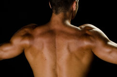 Back of the muscular man. Image of the back of muscular man posing in studio Royalty Free Stock Image