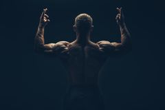 Back of a muscular man naked, studio shot.  Royalty Free Stock Images